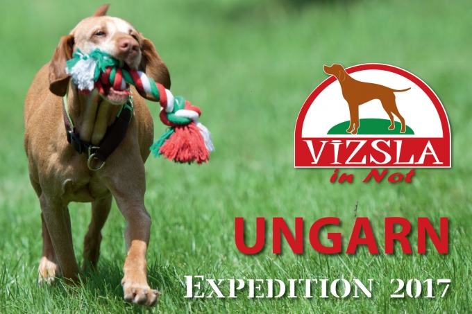 ViN Ungarn Expedition 2017